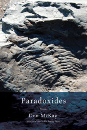 Paradoxides Cover