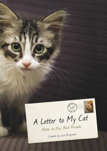 A Letter to My Cat by Lisa Erspamer