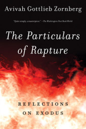 The Particulars of Rapture Cover