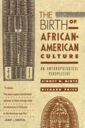 The Birth of African-American Culture Cover