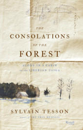 The Consolations of the Forest