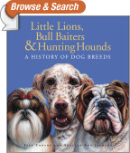 Little Lions, Bull Baiters & Hunting Hounds