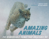 Amazing Animals Cover