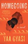 A Tale of Two Sisters: The Characters of Homegoing