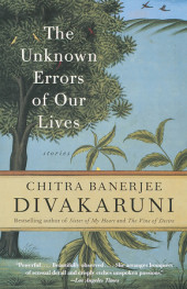The Unknown Errors of Our Lives Cover