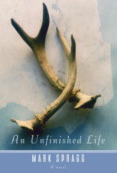 An Unfinished Life Cover