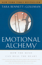 Emotional Alchemy Cover