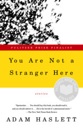 You Are Not a Stranger Here Cover