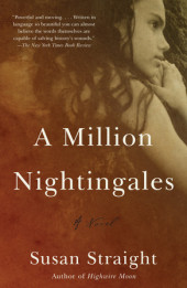 A Million Nightingales