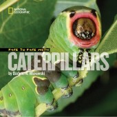 Face to Face with Caterpillars Cover