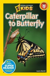 National Geographic Readers: Caterpillar to Butterfly Cover