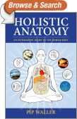 Holistic Anatomy