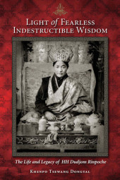 Light Of Fearless Indestructible Wisdom Cover