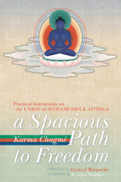 A Spacious Path To Freedom Cover