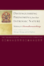 Distinguishing Phenomena from Their Intrinsic Nature Cover