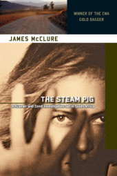 Steam Pig Cover