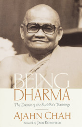 Being Dharma Cover