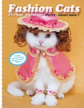 Fashion Cats Cover