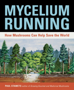 Mycelium Running