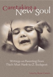 Caretaking a New Soul Cover
