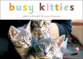 Busy Kitties Cover