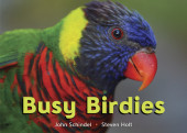 Busy Birdies Cover