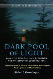 Dark Pool of Light, Volume One Cover
