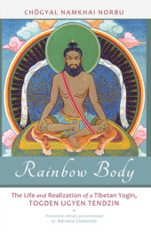 Rainbow Body Cover