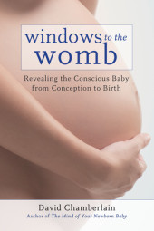 Windows to the Womb Cover