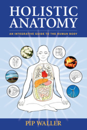 Holistic Anatomy Cover