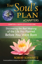 Your Soul's Plan eChapters - Chapter 6: Death of a Loved One Cover