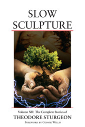 Slow Sculpture Cover