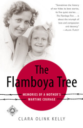 The Flamboya Tree Cover