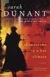 Snowstorms in a Hot Climate Cover