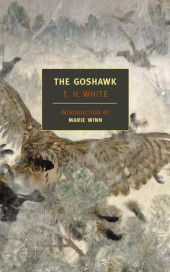 The Goshawk Cover