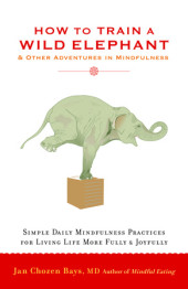 How to Train a Wild Elephant Cover