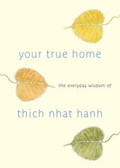 Your True Home Cover