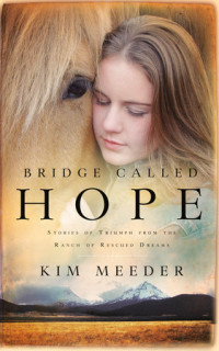 Bridge Called Hope