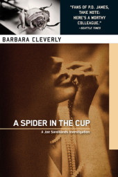 A Spider in the Cup Cover