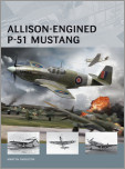 Allison-Engined P-51 Mustang