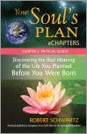 Your Soul's Plan eChapters - Chapter 2: Physical Illness